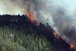 Hiszpania - Pożary lasów na Wyspach Kanaryjskich 2