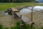 Niski stan wody w Zalewie Solińskim
