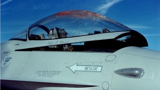 Rocznie mamy 2200 wypadków lotniczych spowodowanych przez ptaki