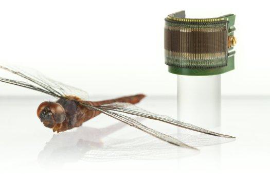 Sztuczne owadzie oko 4
