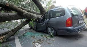 Chorwacja - Załamanie pogody i silny wiatr 6