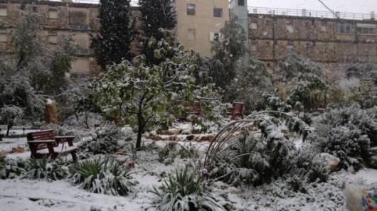 Jerozolima - Śnieg 3