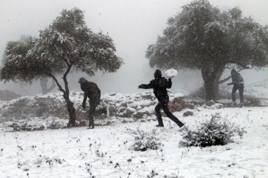 Jerozolima - Śnieg 5