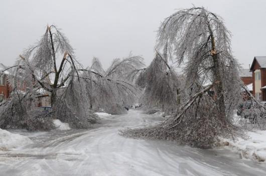 Kanada, Toronto - Śnieg11