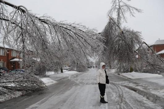Kanada, Toronto - Śnieg12