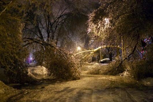Kanada, Toronto - Śnieg7