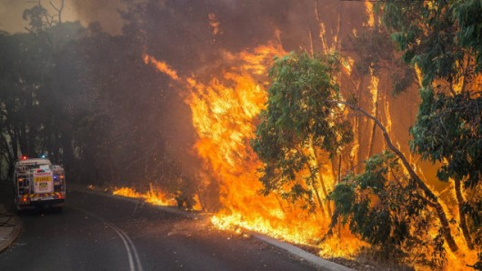 Australia - Pożary lasów na przedmieściach Perth