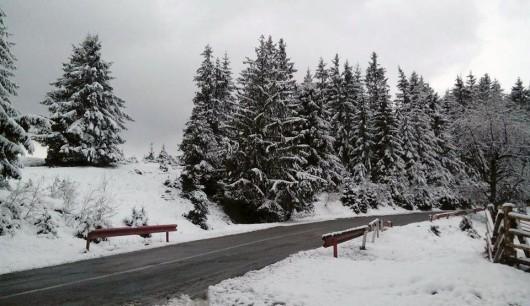 Rumunia - Paltinis, śnieg