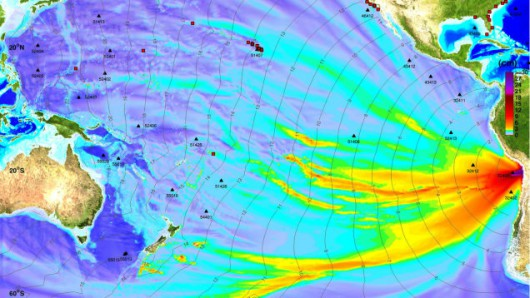 Wysokości fali tsunami na modelu NOAA