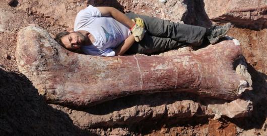 Ameryka Południowa - W Patagonii odkryto szczątki największego ze znanych do tej pory dinozaura, ważył ponad 100 ton 2