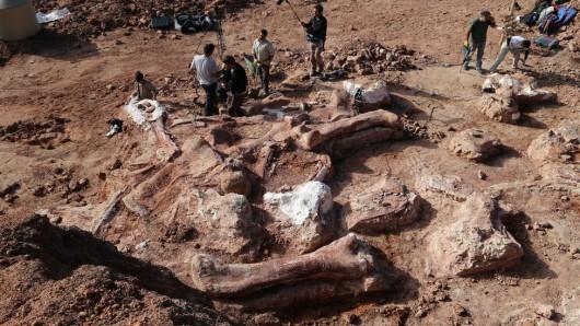 Ameryka Południowa - W Patagonii odkryto szczątki największego ze znanych do tej pory dinozaura, ważył ponad 100 ton