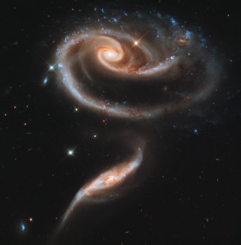 Róża w kosmosie