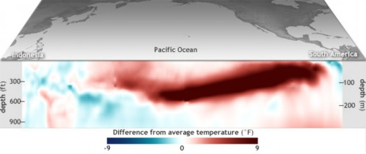 Różnica między średnią temperaturą Pacyfiku w kwietniu a w ciągu wielolecia 1981-2010