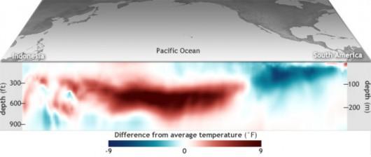 Różnica między średnią temperaturą Pacyfiku w lutym a w ciągu wielolecia 1981-2010