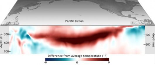 Różnica między średnią temperaturą Pacyfiku w marcu a w ciągu wielolecia 1981-2010