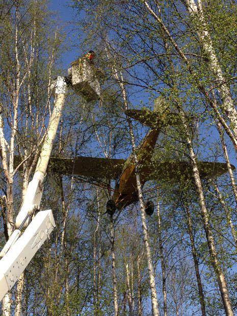 USA - Awionetka zawisła na drzewach na Alasce 2