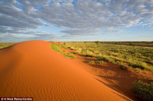 Zazielenione pustynie - Australia 3