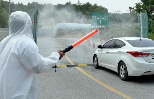 Naukowcy wyhodowali groźnego wirusa grypy. Zdjęcie ilustracyjne /STRINGER /PAP/EPA