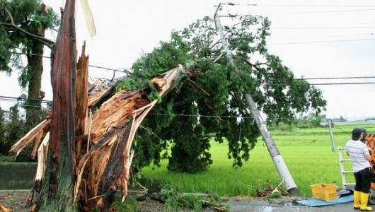 Japonia - Dziesięć ofiar śmiertelnych po przejściu tajfunu 1