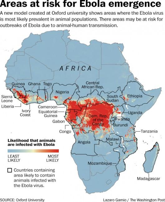 Zasięg epidemii