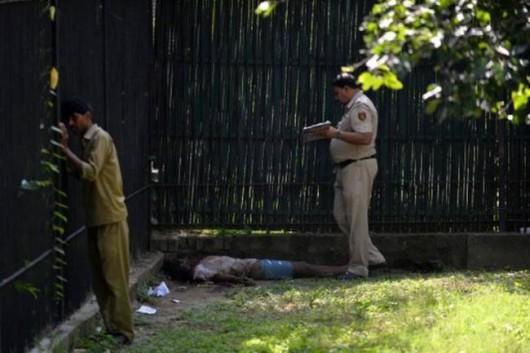 Indie - 20-latek wskoczył na wybieg białego tygrysa w ZOO w New Delhi i już nie wyszedł 2