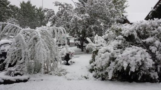 Kanada - Spadł pierwszy śnieg, zima przyszła dużo szybciej niż zwykle 1