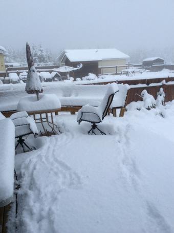 Kanada - Spadł pierwszy śnieg, zima przyszła dużo szybciej niż zwykle 4