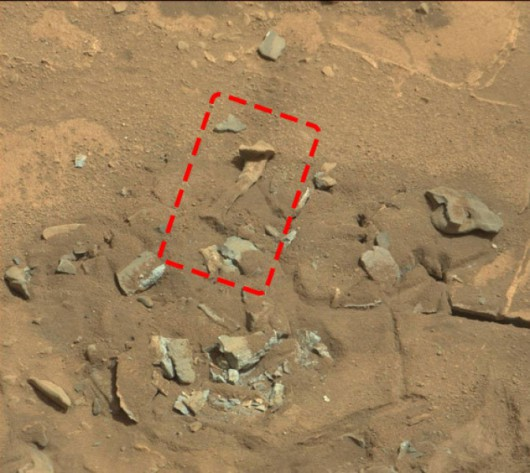 Mars - Kość udowa