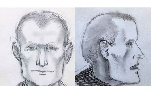 Rosja - Na trasie z Moskwy do Noworossijska grasuje banda zabijająca ludzi, jest już 20 ofiar - portret