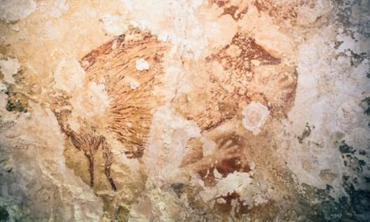 Indonezja - Rysunki na wyspie Sulawesi mają 40 tysięcy lat 2