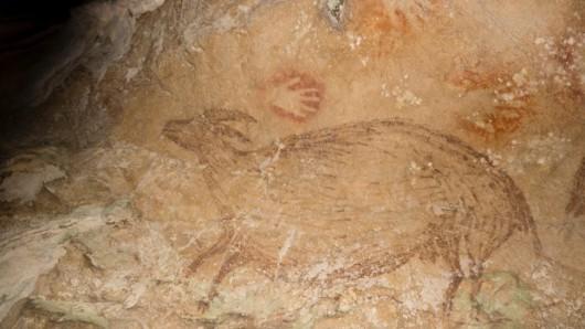 Indonezja - Rysunki na wyspie Sulawesi mają 40 tysięcy lat 6