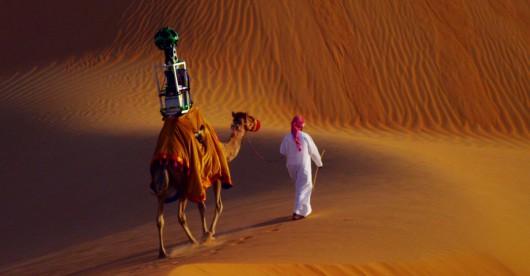 Wielbłądy w służbie dla Google Street View