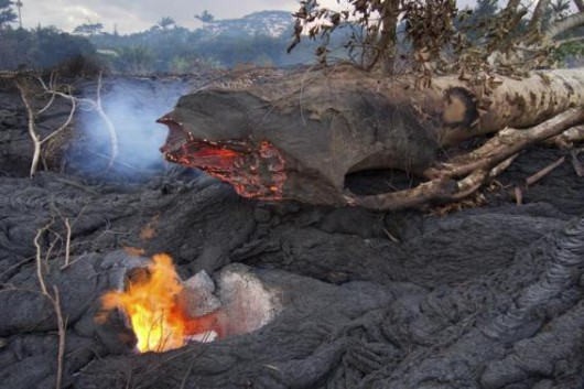 A fallen tree leaves a hole in the lava flow from the Kilauea volcano near the village of Pahoa, Hawaii