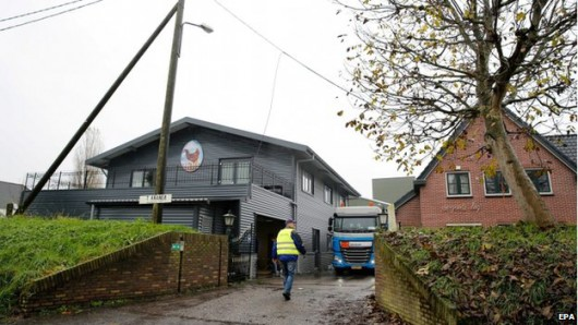 UK i Holandia - Szczep ptasiej grypy wykryty na fermach jest niegroźny dla człowieka