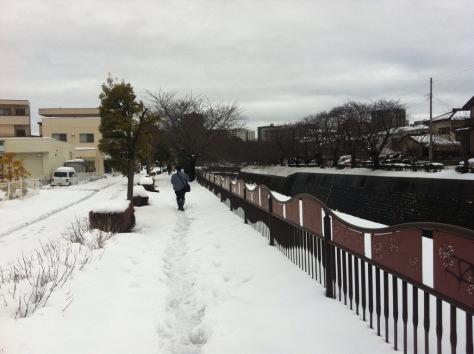 USA - Masy bardzo zimnego powietrza i śnieżyc docierają do 42 stanów 3