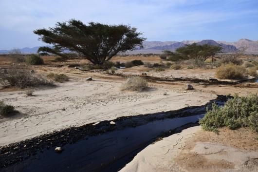 Izrael - Miliony litrów ropy naftowej wylało się z uszkodzonego rurociągu 7