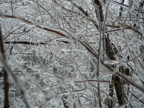 Słowenia - Deszcz, śnieg i mróz 1
