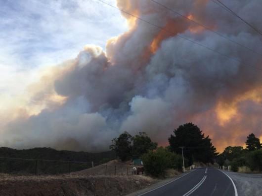 Adelajda, Australia - 40 tysięcy mieszkańców musi opuścić domy z powodu pożaru buszu na południu kraju 1
