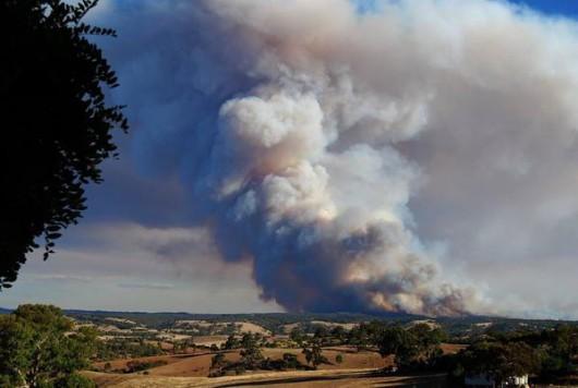 Adelajda, Australia - 40 tysięcy mieszkańców musi opuścić domy z powodu pożaru buszu na południu kraju 3