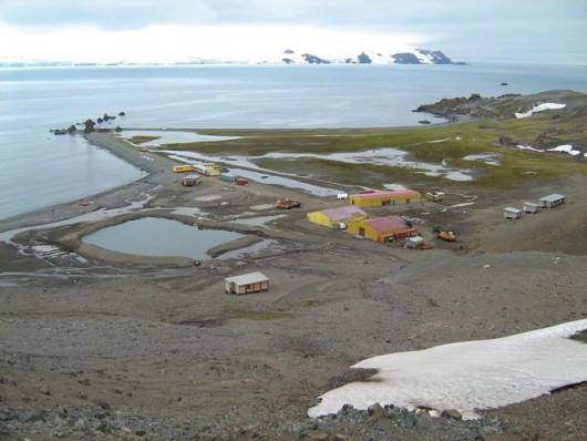 Badania na Antarktydzie prowadzi również Polska Stacja Antarktyczna im. Henryka Arctowskiego