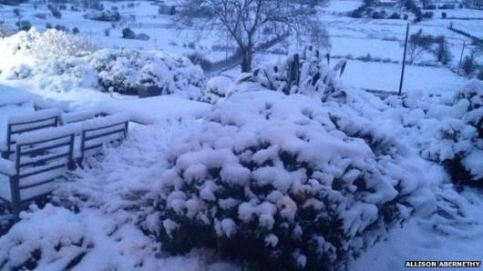 Irlandia Północna - Z powodu intensywnych opadów śniegu zamknięto ponad 200 szkół 3