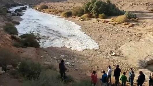 Izrael - Deszcze w okolicach pustyni Negew spowodowały odrodzenie się rzeki Zin 2
