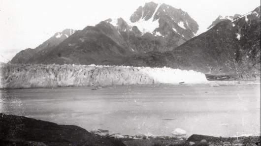 Lodowiec Muir w 1882 roku - Alaska