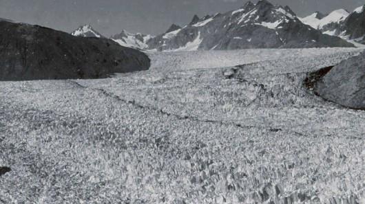 Lodowiec Muir w 1941 roku - Alaska