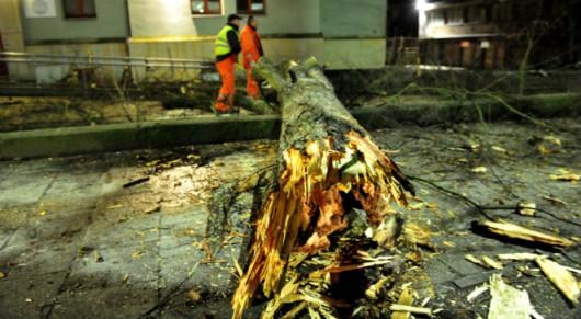 Polska - Przez wichury ponad 200 tysięcy domów nie miało prądu 1