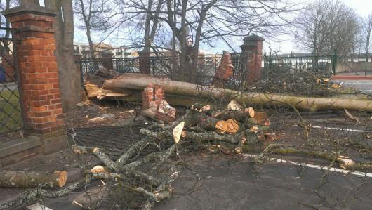 Polska - Przez wichury ponad 200 tysięcy domów nie miało prądu 4