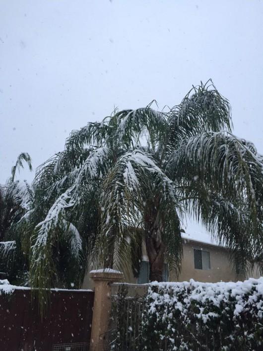 USA - Chłodny front znad Kanady przyniósł długo wyczekiwany śnieg w Kalifornii 2