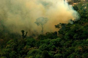 Co roku do Amazonii dociera prawie 30 mln ton pyłu znad Sahary 2