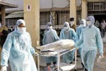Indie - Pojawiła się nowa odmiana wirusa świńskiej grypy H1N1 2