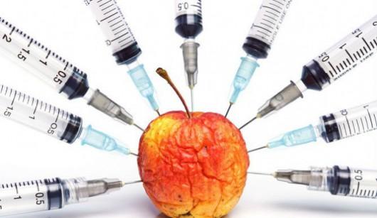 Jabłko GMO 2